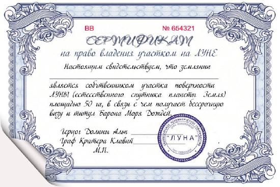 сертификат скачать шаблон Word скачать - фото 8